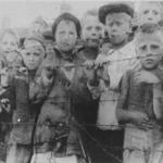 The Nazis killed millions of Poles