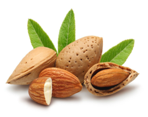 nutritious foods almond