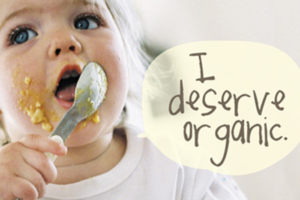 best organic baby food brands