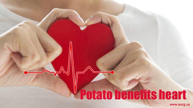 potato enhance Brain & Nervous Activity