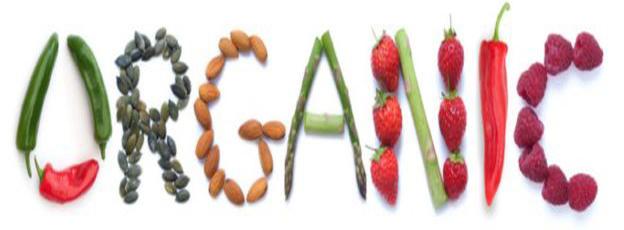 plum organics baby foods brand