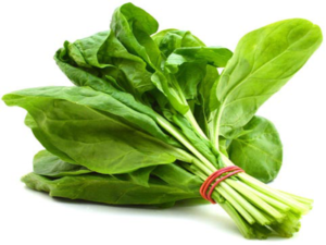 spinach , nutritious foods